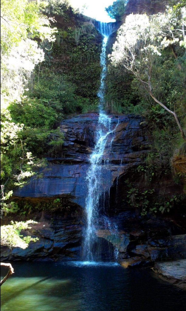 Blue Mountains Dog Friendly Walk Minnehaha Falls Katoomba
