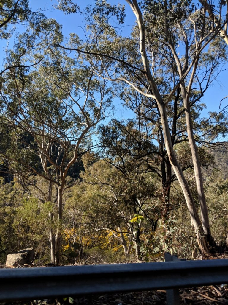 Scenary Bylong Valley Way NSW