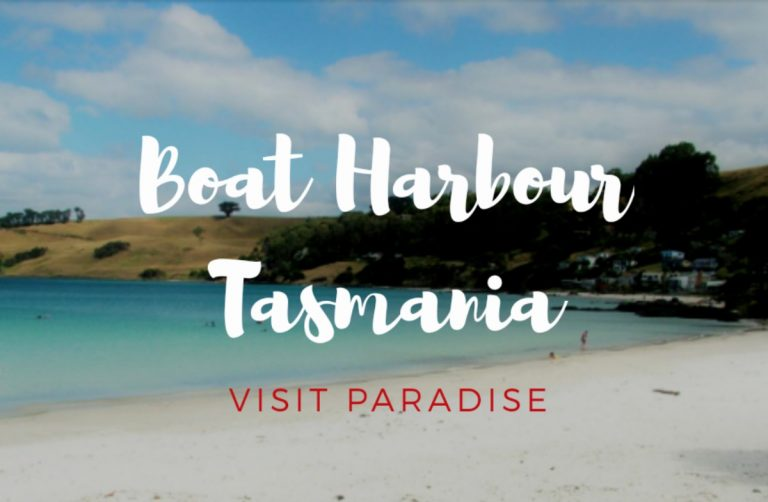 Free camping Boat Harbour